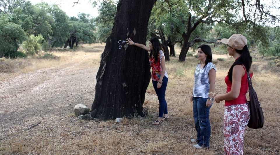 woman leaning on cork tree
